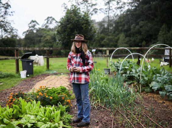 VALLEYS END FARM TOUR AND TEA
