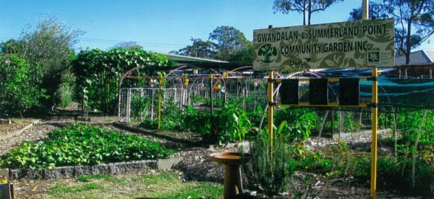 Gwandalan/Summerland Point Community Garden